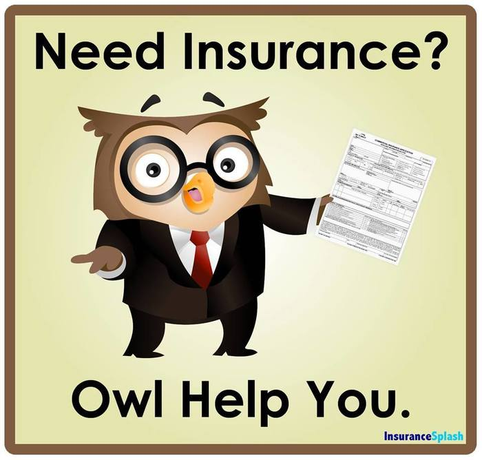 Need Insurance? Owl Help You.